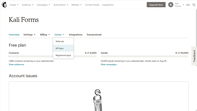 Mailchimp api keys section